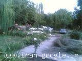 فروش استثنائی زمین در منطقه مهنگان-شیراز